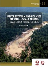 Deforestation and policies on small-scale mining: case study Madre de Dios