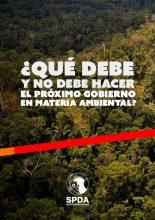 ¿Qué debe y no debe hacer el próximo gobierno en materia ambiental?
