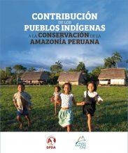 Contribución de los pueblos indígenas a la conservación de la Amazonía peruana