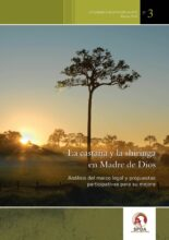 La castaña y la shiringa en Madre de Dios: análisis del marco legal y propuestas participativas para su mejora