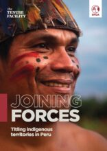 Joining forces: titling indigenous territories in Peru