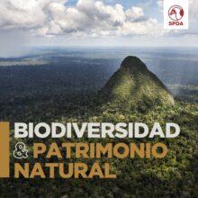 Biodiversidad y Patrimonio Natural