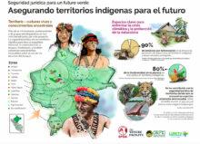 Seguridad jurídica para un futuro verde: asegurando territorios indígenas para el futuro