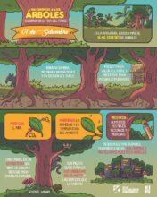 Valoremos a los árboles: celebremos el Día del Árbol